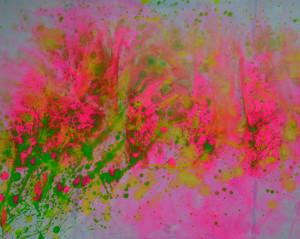 Vibrant Color!